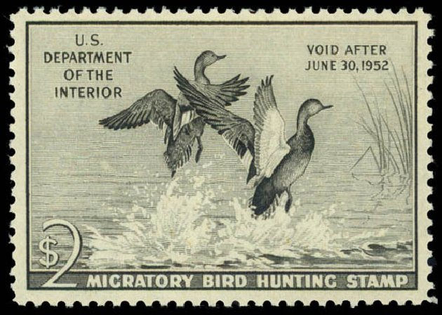 US Stamps Value Scott Catalog RW18 - US$2.00 1951 Federal Duck Hunting. Daniel Kelleher Auctions, May 2014, Sale 653, Lot 2356