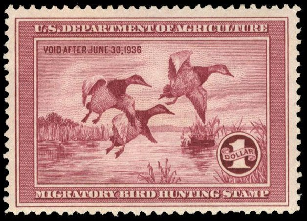 US Stamps Values Scott Cat. # RW2: US$1.00 1935 Federal Duck Hunting. Cherrystone Auctions, Mar 2008, Sale 200803, Lot 377