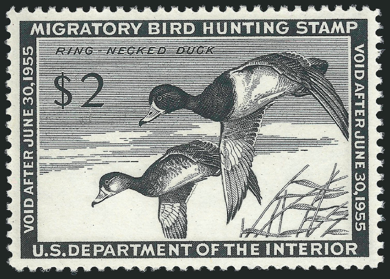 Value of US Stamp Scott Catalog RW21 - 1954 US$2.00 Federal Duck Hunting. Robert Siegel Auction Galleries, Mar 2013, Sale 1040, Lot 2249