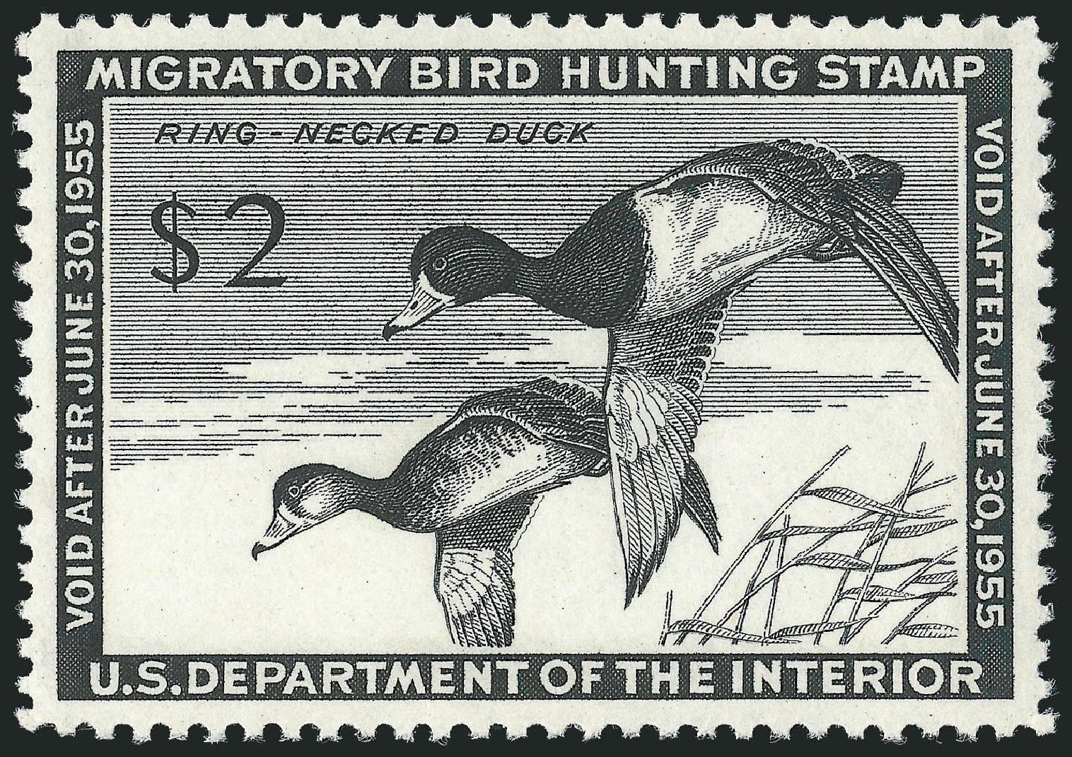 US Stamp Value Scott RW21: 1954 US$2.00 Federal Duck Hunting. Robert Siegel Auction Galleries, Nov 2013, Sale 1061, Lot 4523