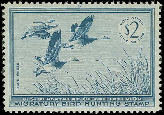 Cost of US Stamps Scott Cat. # RW22: US$2.00 1955 Federal Duck Hunting. H.R. Harmer, Jun 2015, Sale 3007, Lot 3601