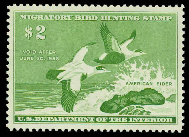 US Stamps Value Scott Cat. # RW24 - US$2.00 1957 Federal Duck Hunting. Daniel Kelleher Auctions, Oct 2011, Sale 626, Lot 690