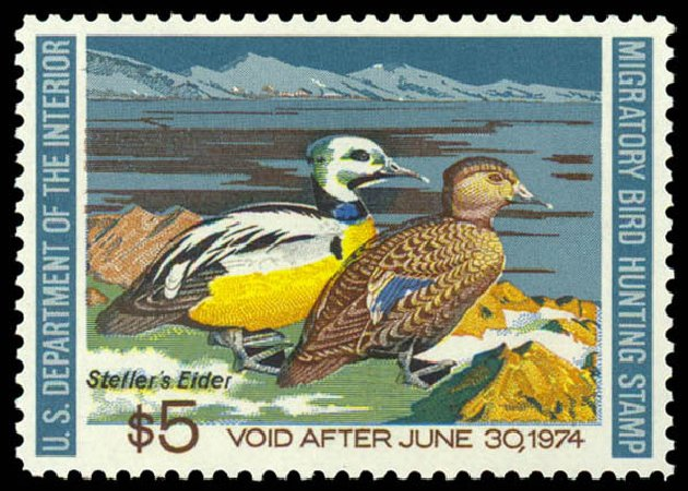 Values of US Stamps Scott Cat. #RW40: US$5.00 1973 Federal Duck Hunting. Daniel Kelleher Auctions, May 2014, Sale 653, Lot 2371
