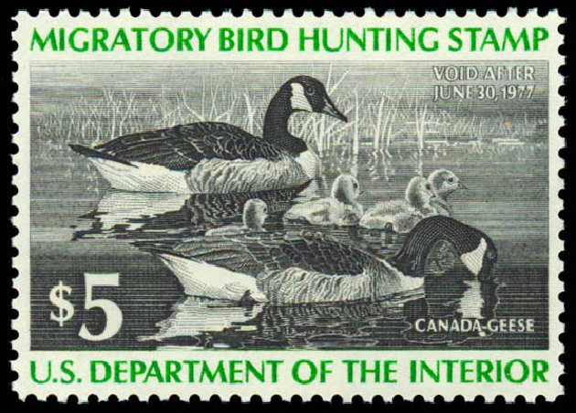 US Stamps Values Scott Catalog #RW43: 1976 US$5.00 Federal Duck Hunting. Daniel Kelleher Auctions, May 2014, Sale 653, Lot 2374
