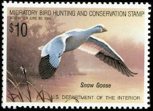 Price of US Stamp Scott Catalog RW55 - 1988 US$10.00 Federal Duck Hunting. Spink Shreves Galleries, Jul 2015, Sale 151, Lot 451