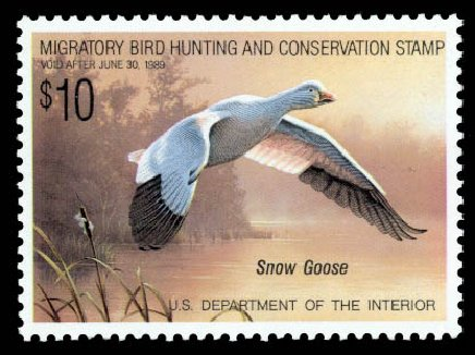 US Stamp Price Scott # RW55: 1988 US$10.00 Federal Duck Hunting. Daniel Kelleher Auctions, Sep 2013, Sale 639, Lot 3855