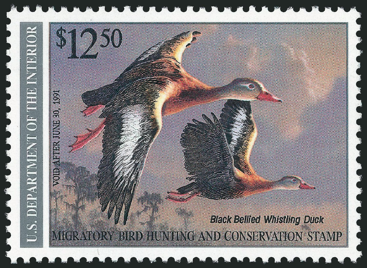 Cost of US Stamps Scott Catalogue # RW57: US$12.50 1990 Federal Duck Hunting. Robert Siegel Auction Galleries, Mar 2011, Sale 1007, Lot 3201
